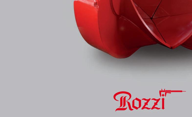 Rozzi